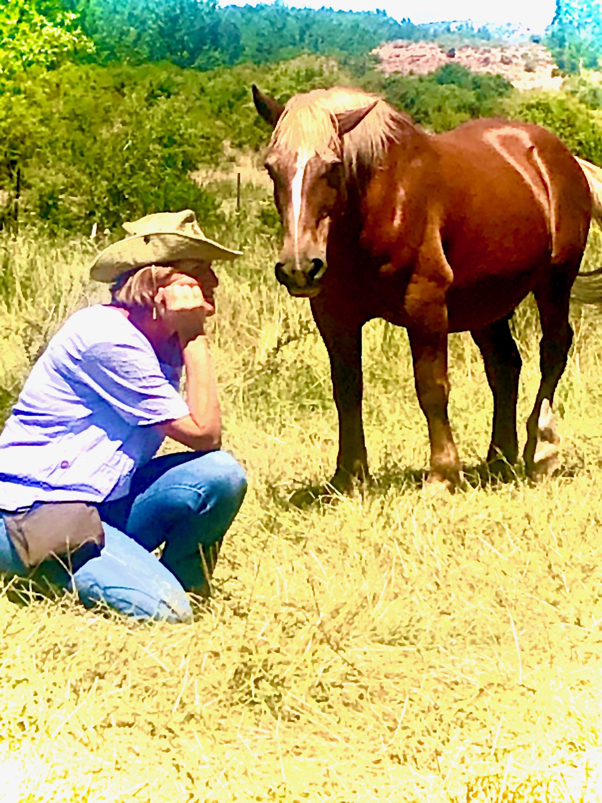 Coaching y Constelaciones con caballos